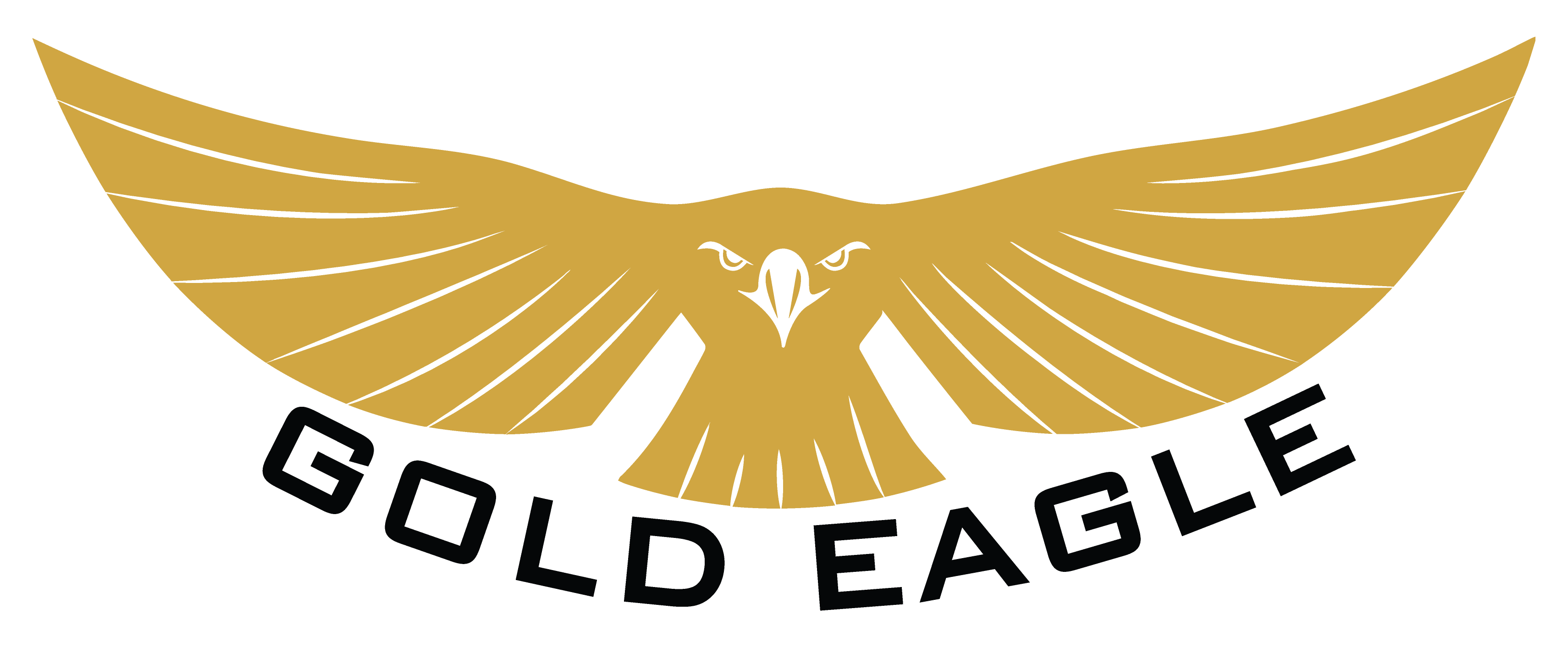 Project Gold Eagle logo